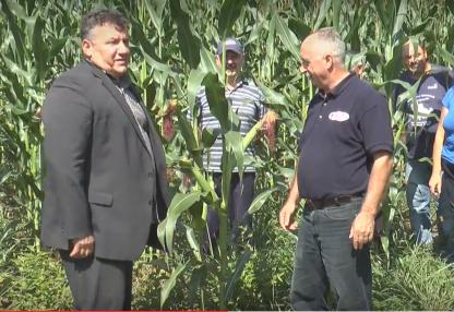 Branitelji u polju graha i kukuruza